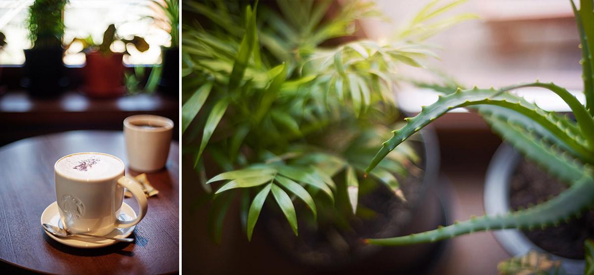 kawka i zieleń w manufakturze