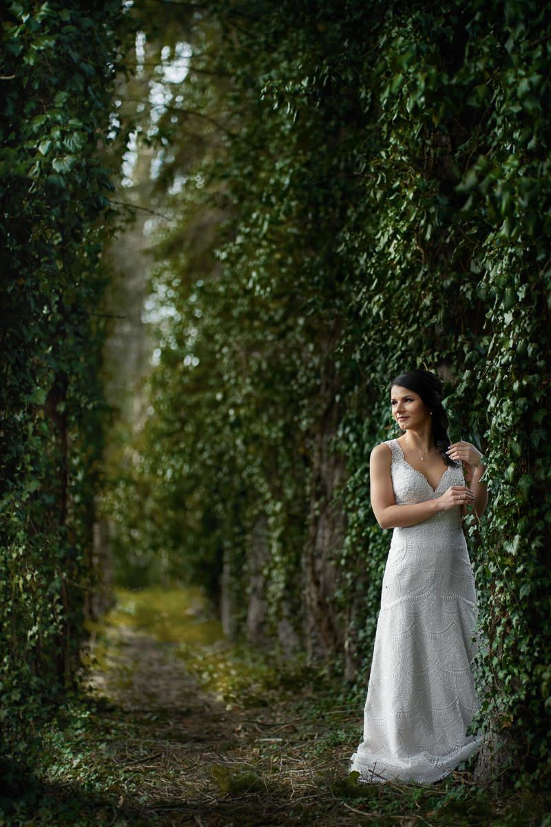 arboretum bolestraszyce pomysł na plener ślubny podkarpacie