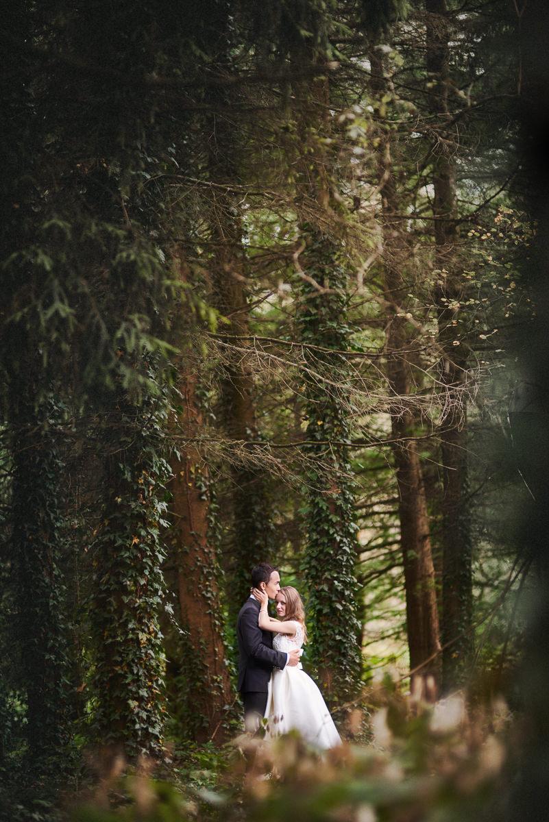 porośnięte drzewa w arboretum bolestraszyce