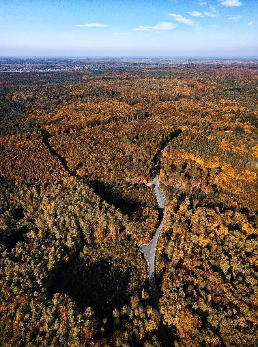 jesienna sesja z drona