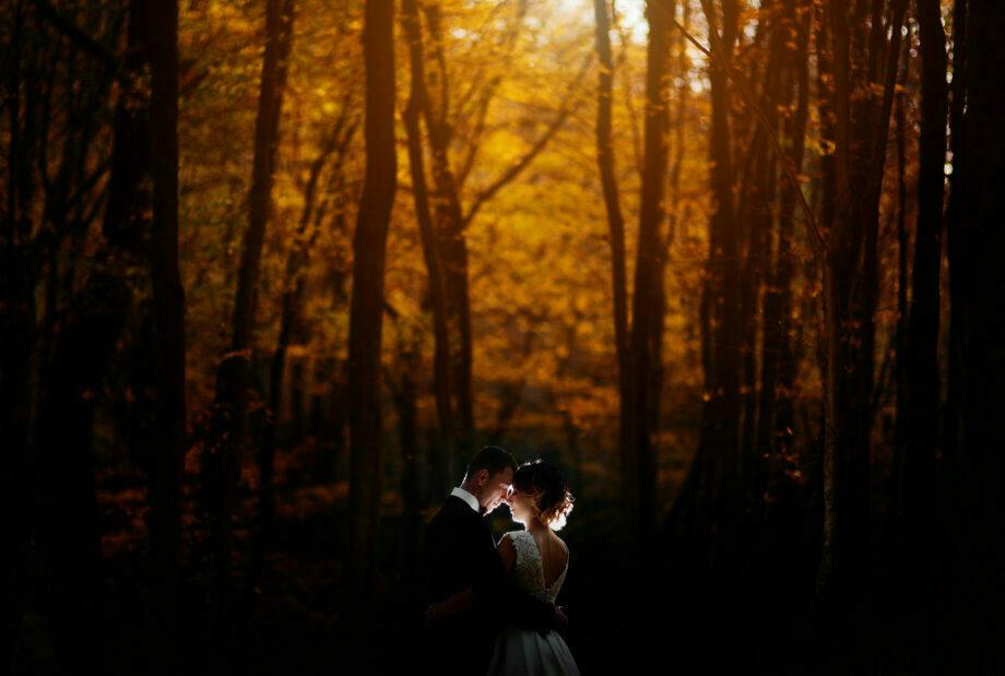 fotografia ślubna w lesie niedaleko przemyśla
